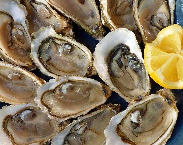 ostras afrodisiacas